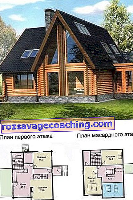 Original projects of log houses